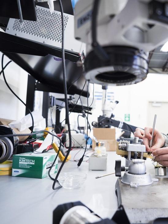 Профессиональный ремонт мелкой бытовой техники, гарантия